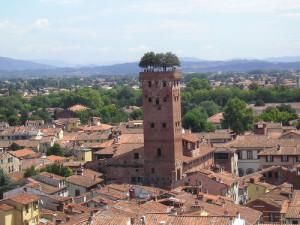 Torre-Guinigi-Lucca